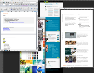 Image of Tobins creative brief and project notes